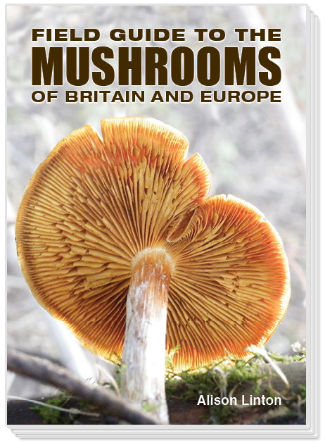 Field Guide to the Mushrooms of Britain and Europe
